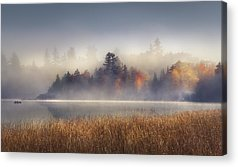Fog Acrylic Prints