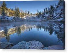 Colorado Aspen Acrylic Prints
