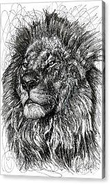 African Animal Acrylic Prints