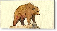 Brown Bear Acrylic Prints