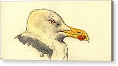 Sea Gull Acrylic Prints