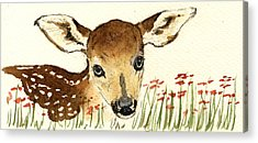 Fawns Acrylic Prints