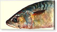 Fish Acrylic Prints