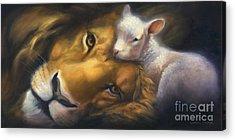 Lion Art Acrylic Prints