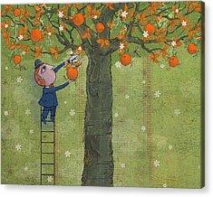 Fruit Tree Acrylic Prints