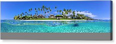 Above And Below Acrylic Prints