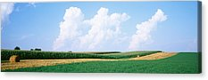Daviess County Photographs Acrylic Prints