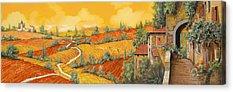 Tuscany Vineyards Acrylic Prints
