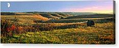 Prairie Acrylic Prints