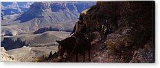 South Kaibab Trail Acrylic Prints