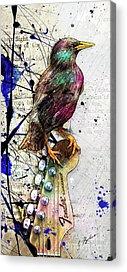 Starlings Acrylic Prints