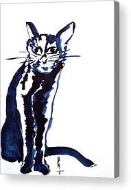 Spirit Cat Essence Paintings Acrylic Prints