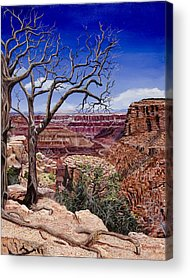 Pinion Paintings Acrylic Prints