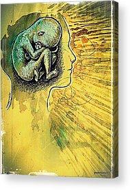 Gestation Of Ideas Acrylic Prints