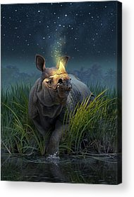 Rhinoceros Acrylic Prints
