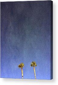 Palm Trees Acrylic Prints