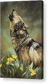Call Of The Wild Paintings Acrylic Prints
