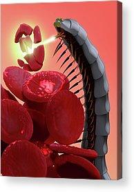 Nano-technology Acrylic Prints