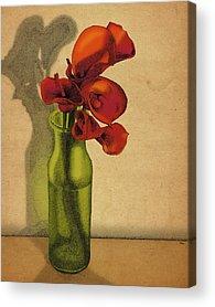 Calla Lilly Acrylic Prints