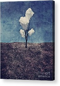 Surreal Landscape Digital Art Acrylic Prints