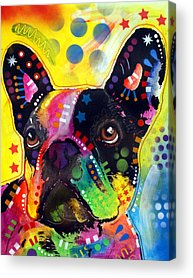 Bulldog Acrylic Prints