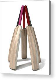 Cricket Club Acrylic Prints