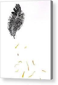 Bold Contrast Art Acrylic Prints