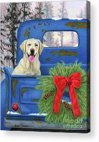 Dog In Snow Drawings Acrylic Prints