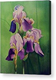 David Hoque Acrylic Prints