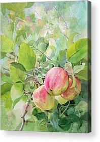 Farm Stand Paintings Acrylic Prints