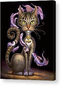 Tabby Cats Acrylic Prints
