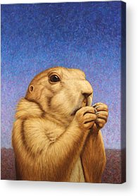 Groundhog Acrylic Prints