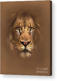 Reproductions Acrylic Prints