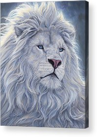 Lion Acrylic Prints