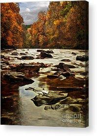 Autumn Leaf On Water Photographs Acrylic Prints