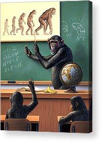 Chimpanzee Acrylic Prints