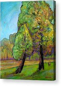 Pine Tree Paintings Acrylic Prints