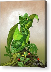 Spinach Acrylic Prints