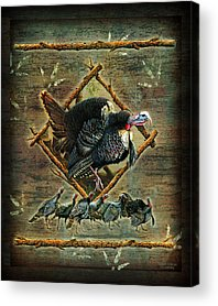 Turkey Acrylic Prints