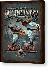 Waterfowl Paintings Acrylic Prints