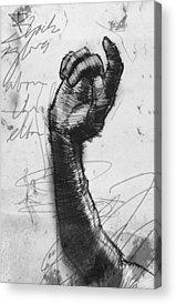 Opera Gloves Drawings Acrylic Prints