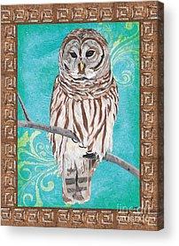 Barred Owl Acrylic Prints