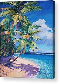 South Island Acrylic Prints