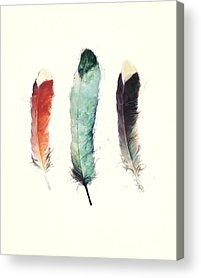 Feather Paintings Acrylic Prints