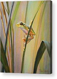 Frog Acrylic Prints