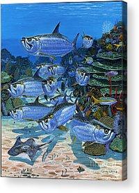 Tarpon Acrylic Prints