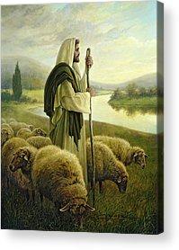 Sheep Paintings Acrylic Prints