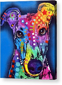 Greyhound Paintings Acrylic Prints