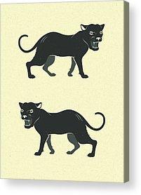 Panther Acrylic Prints