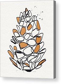 Pine Cones Acrylic Prints